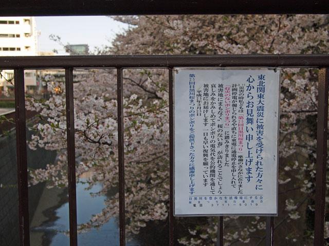 2011.4.22(金) P4120370.jpg